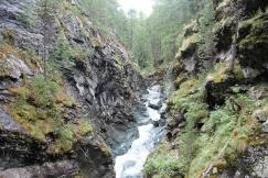 The Gorner Gorge